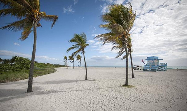 Quantas milhas é preciso para Miami e Orlando