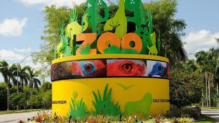 Dicas para o Zoo Miami