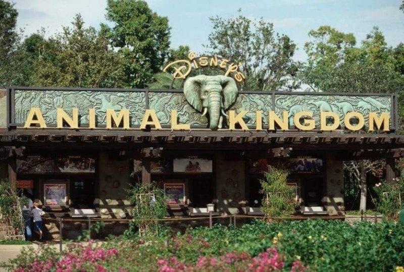Entrada do Parque Animal Kingdom na Disney em Orlando
