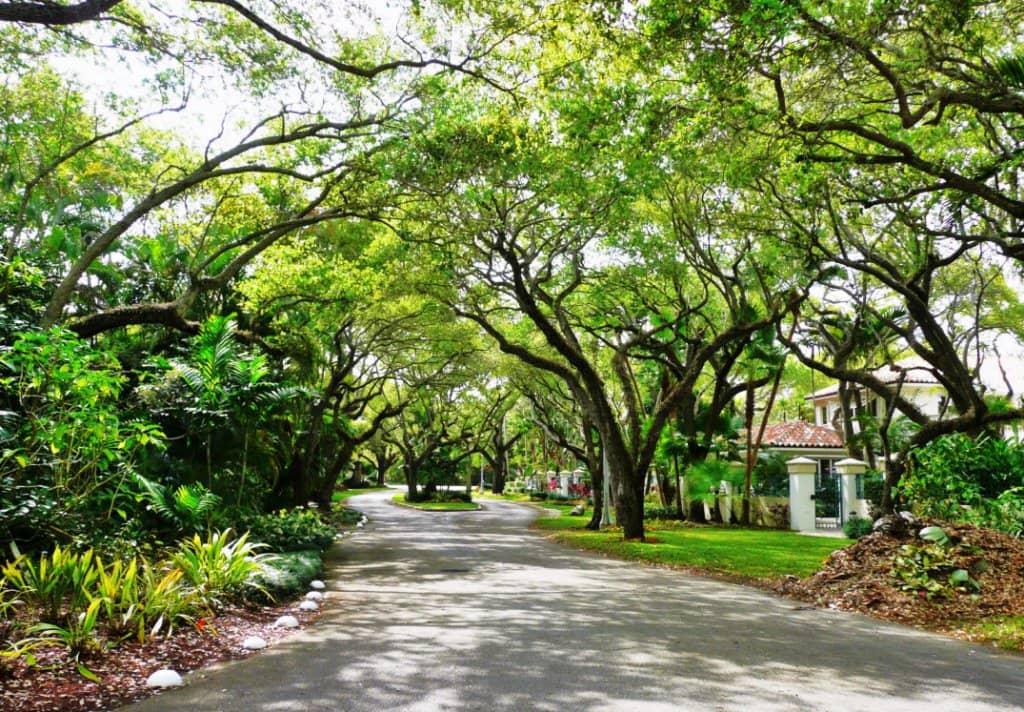 Dicas de Coconut Grove