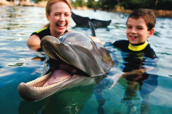 Parque Aquático Discovery Cove em Orlando