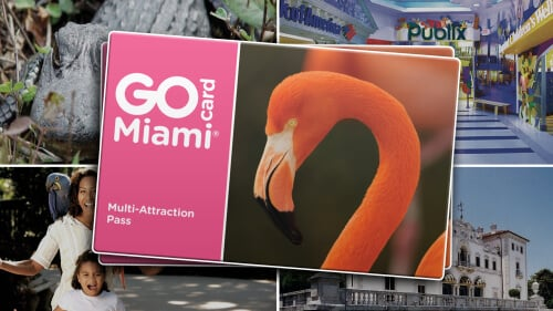 Economize 55% no ingresso do Jungle Island e de outras atrações usando o GoCard Miami