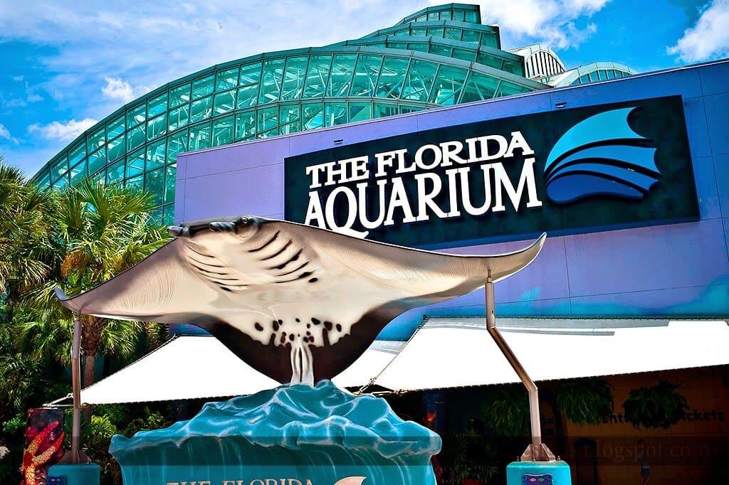 Florida Aquarium em Tampa na Flórida