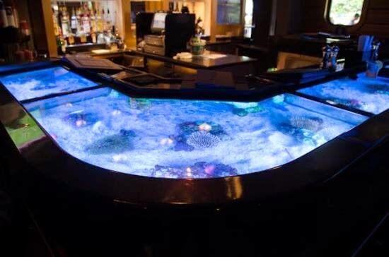 Aquário no restaurante Sharks Underwater Grill do SeaWorld em Orlando