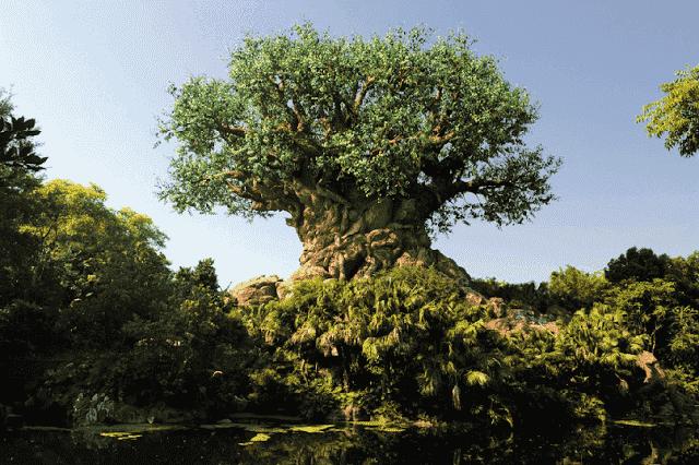 The Tree of Life no Animal Kingdom em Orlando