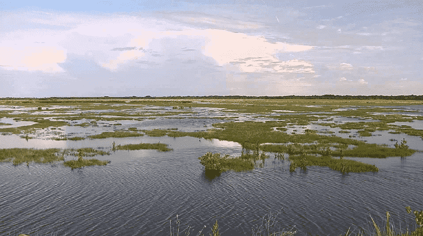 Canaveral National Seashore e Merritt Island National Wildlife Refuge em Orlando
