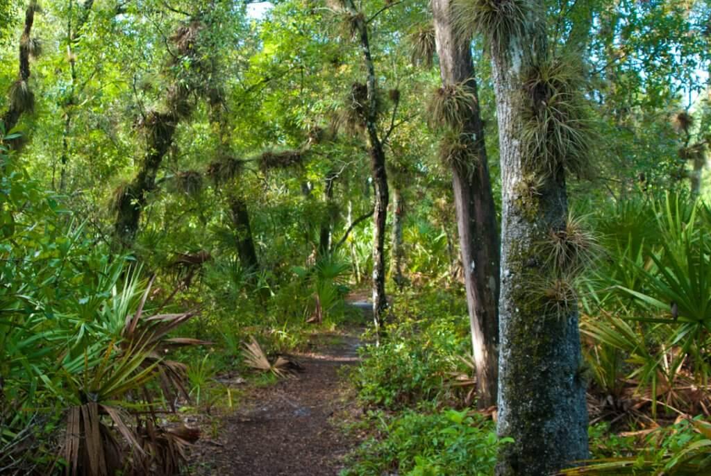 Reserva em Orlando
