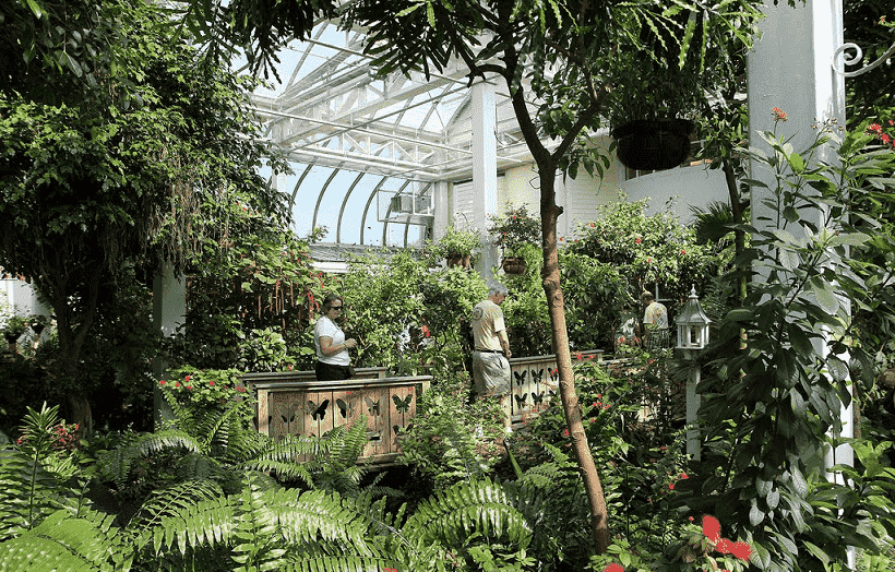 Key West Butterfly and Nature Conservatory en Miami