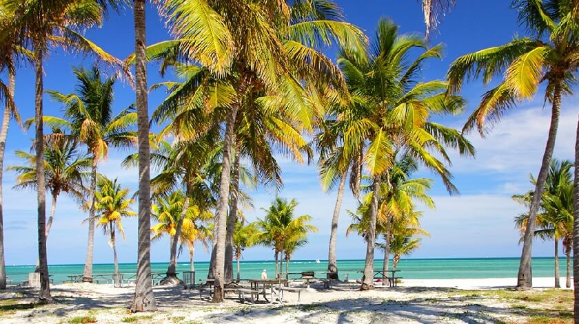 Crandon Park Miami: Parque natural em Key Biscayne