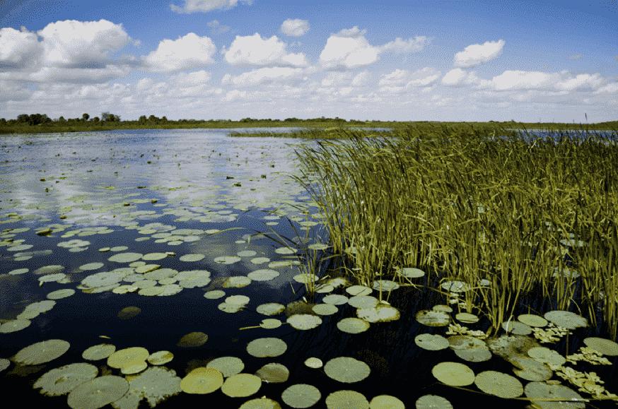 Lake Okeechobee em Miami