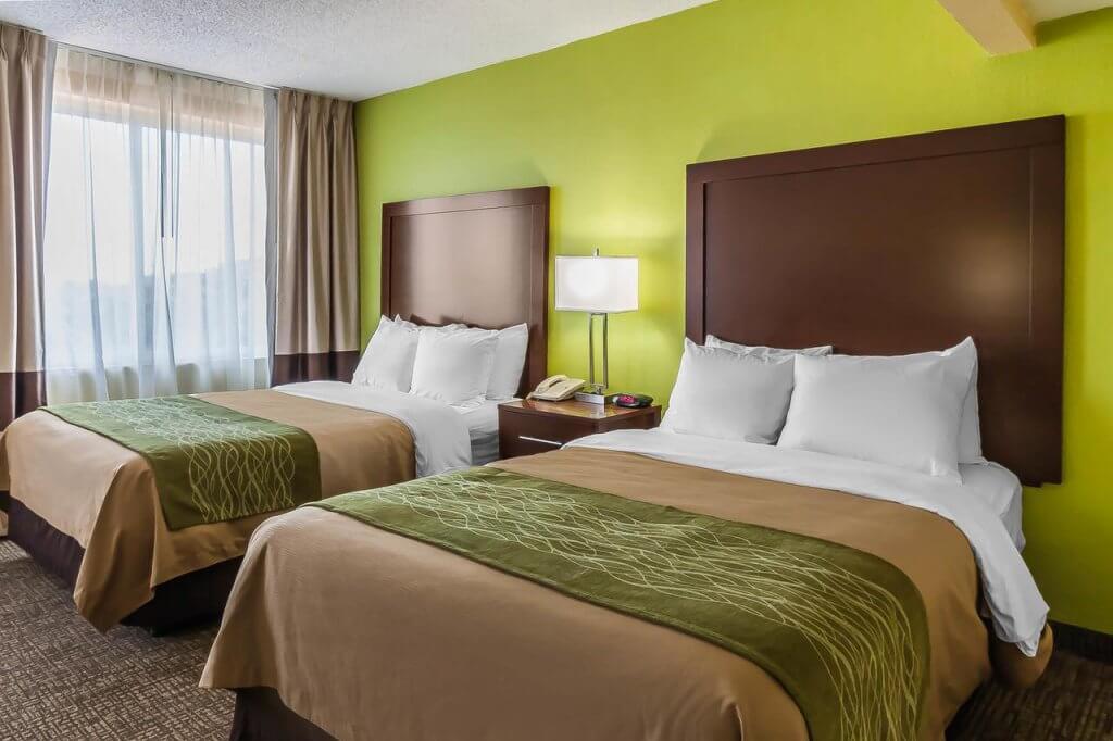 Hotéis bons e baratos em São Petersburgo na Flórida: Hotel Comfort Inn North Saint Petersburg: quarto