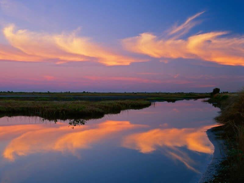 6 passeios de bate e volta de Orlando: Merritt Island National Wildlife Refuge em Orlando