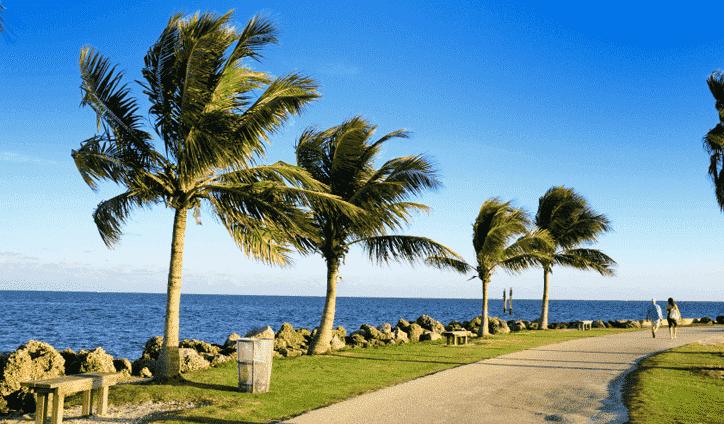 Como morar em Miami - Guia completo