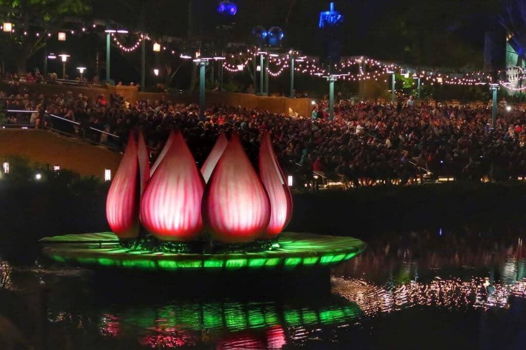 Melhores lugares para ver os shows da Disney em Orlando: Disney Animal Kingdom - Rivers of Light