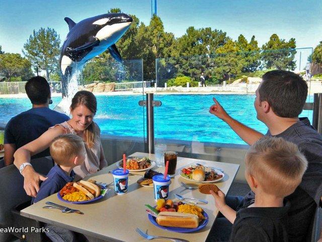 Almoço com baleias orcas no SeaWorld