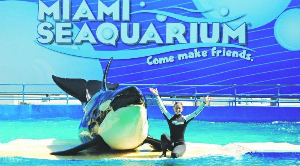 Seaquarium em Miami