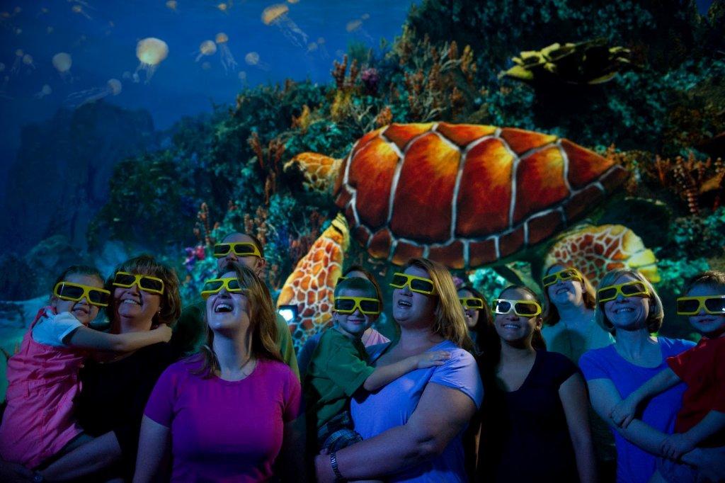 Atração Turtle Trek no SeaWorld